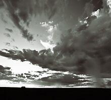 Summer Rain by Craig Hender