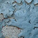 Blue Peeling Paint on Cement by Tony  Bazidlo