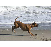 Beach Brakes Photographic Print