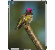 WARMING UP iPad Case/Skin
