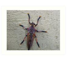 Bug on a wall Art Print
