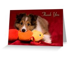 Baby Puppy Thank You Greeting Card