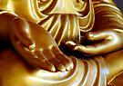Buddha Hand 2 by Dave Lloyd