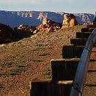 Mountain side rail by CarloDC