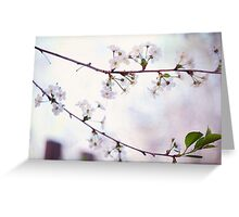 Nature Innocence Greeting Card