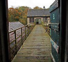The Bridge by Darren Carey