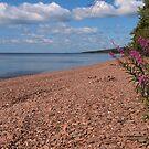 North Shore Beach by Dawne Olson