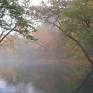 Ozarks Autumn by Dawne Olson