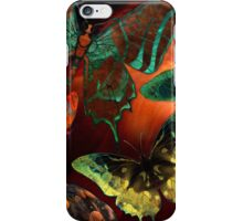 Butterfly Fantasy, Colorful hand Drawn Butterflies Hand drawn high resolution butterfly images.  iPhone Case/Skin