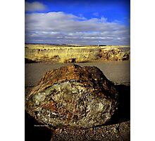Petrified Wood Photographic Print