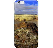 Petrified Wood iPhone Case/Skin