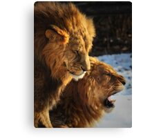 Grumpy Brothers Canvas Print