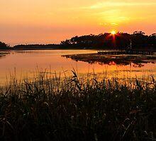 Smokey Sunrise Lake Tyers Victoria by Chris Kean