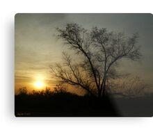 Amber Light Metal Print