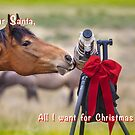List for Santa by Owed to Nature
