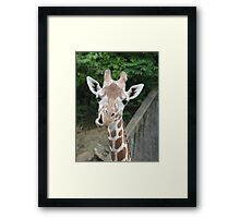 Not Impressed Framed Print