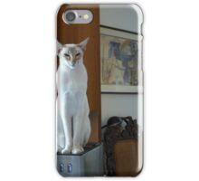 Maya iPhone Case/Skin