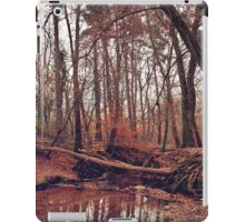 Remember The Good Times iPad Case/Skin