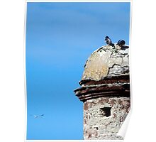 Birds atop old fort Poster