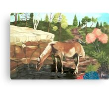 Horse At The Pond Canvas Print
