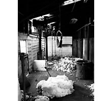 Brickendon Shearing Shed Photographic Print