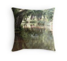 Penelli Canal Throw Pillow