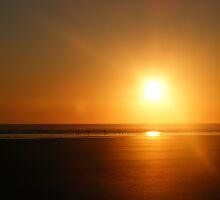 cefn sidan sunset by sjolin