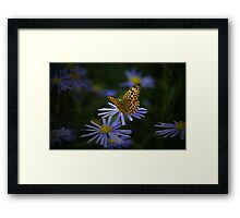 Dancing With Light Framed Print