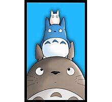 Totoro. Photographic Print