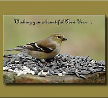 Wishing you a bountiful New Year . . . by Bonnie T.  Barry
