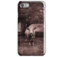 Country Seen iPhone Case/Skin