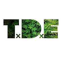 TDE Weed Photographic Print