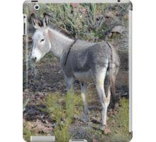 Lake Pleasant, AZ - Donkey iPad Case/Skin