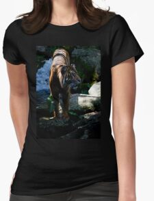 Majestic Tiger from Melbourne Zoo Womens Fitted T-Shirt