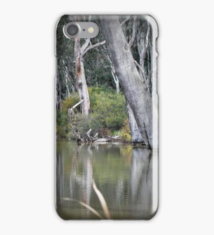 Ready to Fall, Old trees at Gunbower iPhone Case/Skin