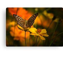 Nectar Flight Canvas Print