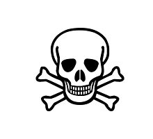 Skull N' Bones by forbiddngoods