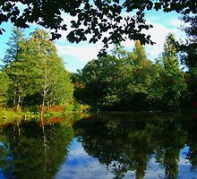 Lawns Woods Lake  by Chris  Munday