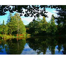 Lawns Woods Lake  Photographic Print