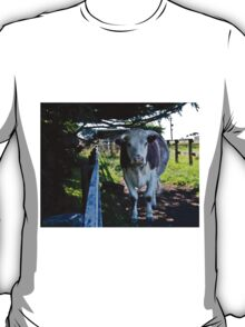 Having a Cow of a Day T-Shirt