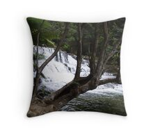 first cascades at Liffey Falls  Throw Pillow