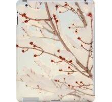 Spring Snow Storm iPad Case/Skin