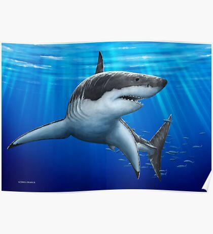 Blue Predator (Great White Shark) Poster