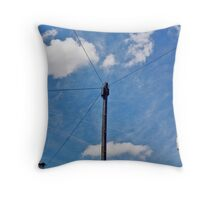 View from Yard  Throw Pillow