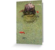Fishpond at Giardini Villa Rufolo, Ravello Greeting Card