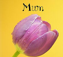 Love you mum by ~ Fir Mamat ~