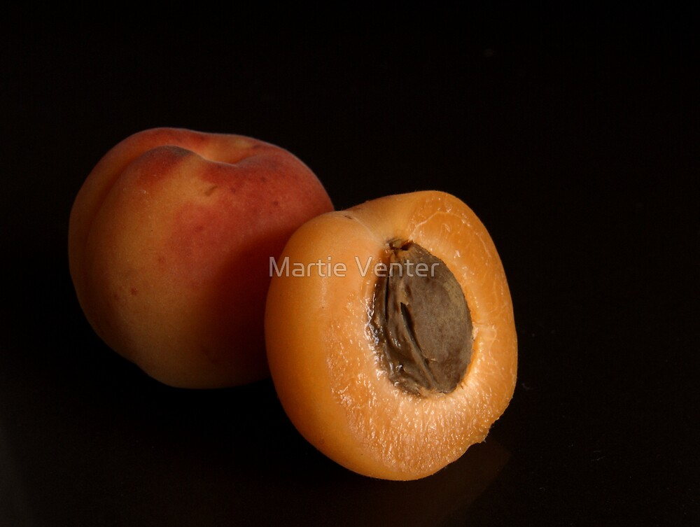 Apricot Macro by Martie Venter