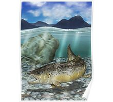 River Brown - Brown Trout Poster