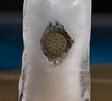 Frozen In Time (2007) by Darren Robertson