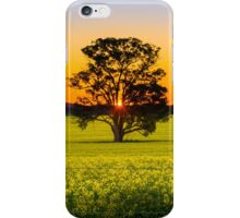 Canola Sunset iPhone Case/Skin